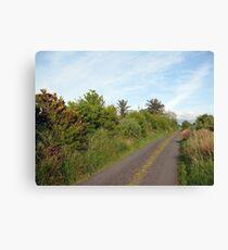 Rural Irish road Canvas Print
