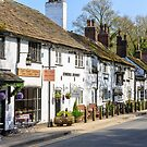 An English village - Prestbury Cheshire by Chris Warham
