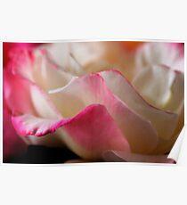 Blushing Romance Poster