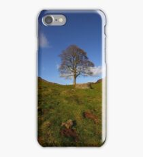 The Sycamore Tree at Sycamore Gap iPhone Case/Skin