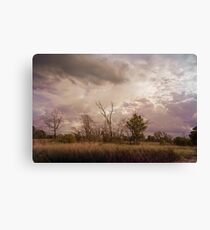 Stormy gray skies hang over Indiana Dunes Canvas Print