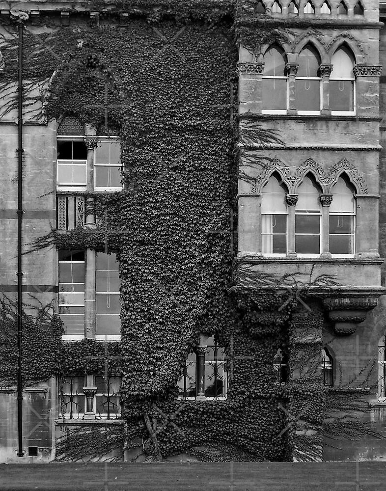 Christ Church, Oxford by LydiaBlonde