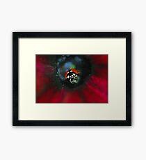 A Very Special Ladybug  Framed Print