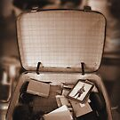 Suitcase by alicelily