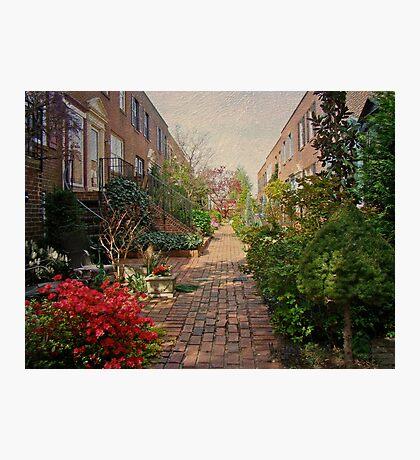 Philadelphia Courtyard - Symphony of Springtime Gardens Photographic Print