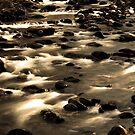 Porters Creek by Gary L   Suddath