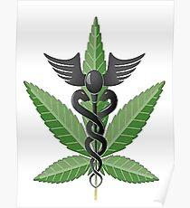 Medical Marijuana Leaf Poster