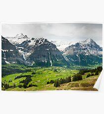 Grindelwald in Spring Poster