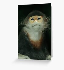 Red Shanked Douc Langur Greeting Card
