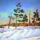 Snowy Road in Siberia by Oleg Atbashian
