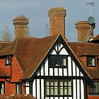The Manor House - Half Timbered Front by EasterDaffodil