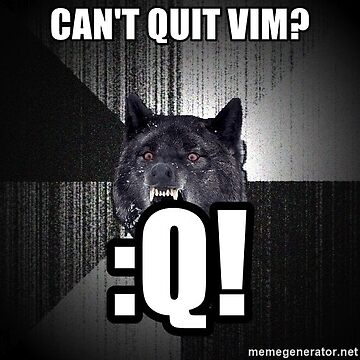 Quit Vim same by Jugulaire