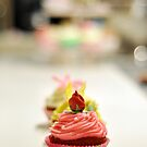 Cupcake by Danielle Knight