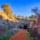 Swan View Railway Tunnel by Dave Catley