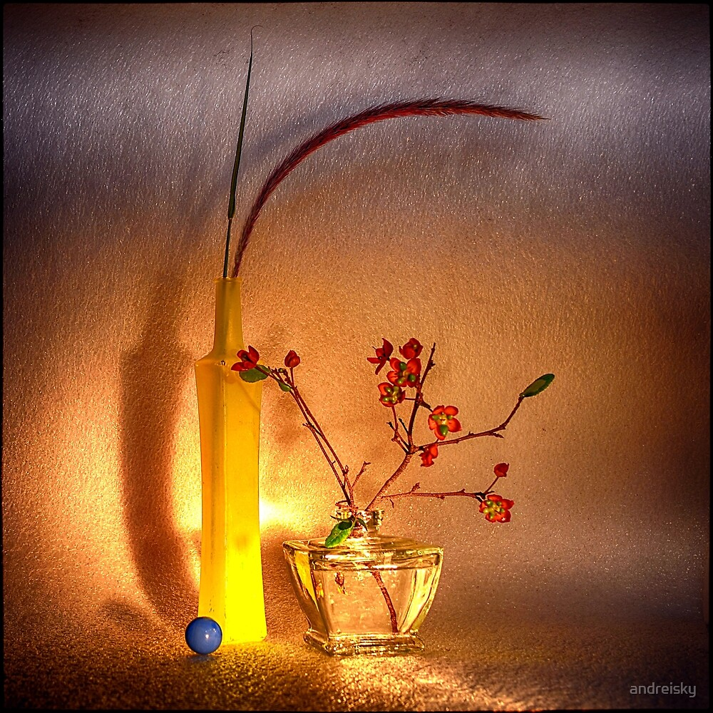Still life with Carnival Ochna by andreisky