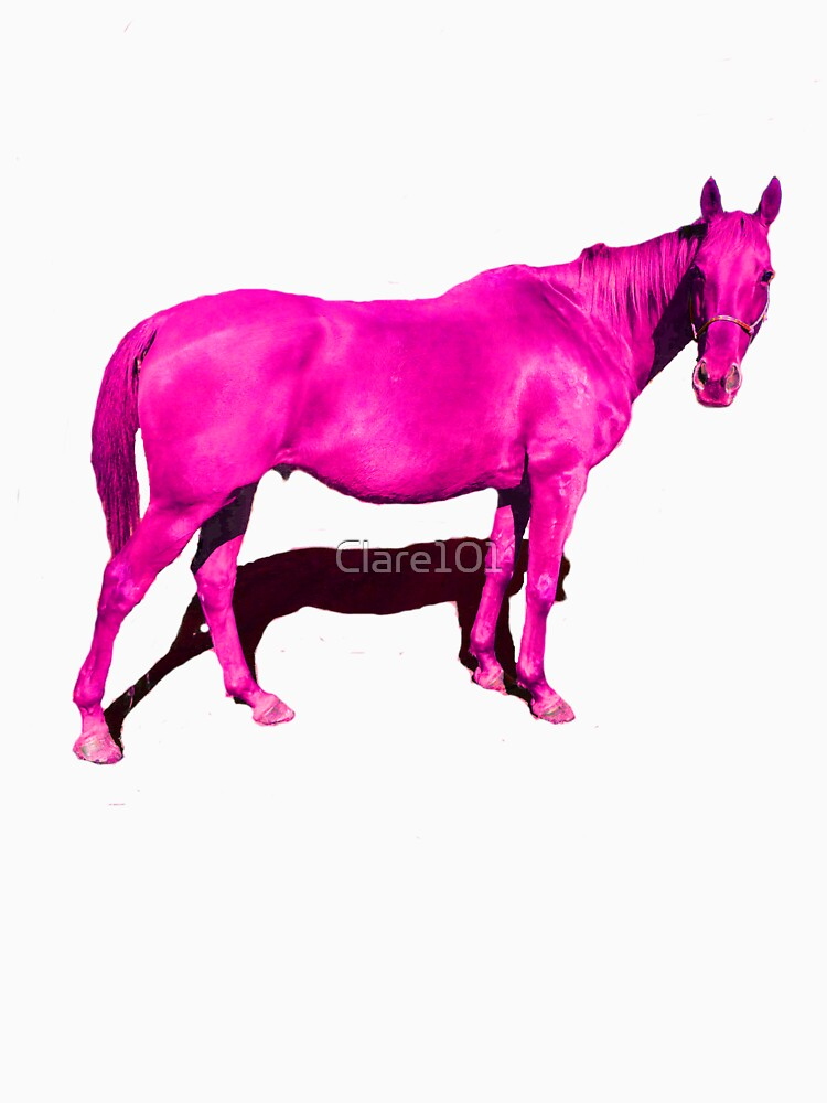 P!nk Horse by Clare101