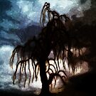 Lonely tree by Gal Lo Leggio