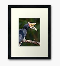I Love My Beak... Framed Print