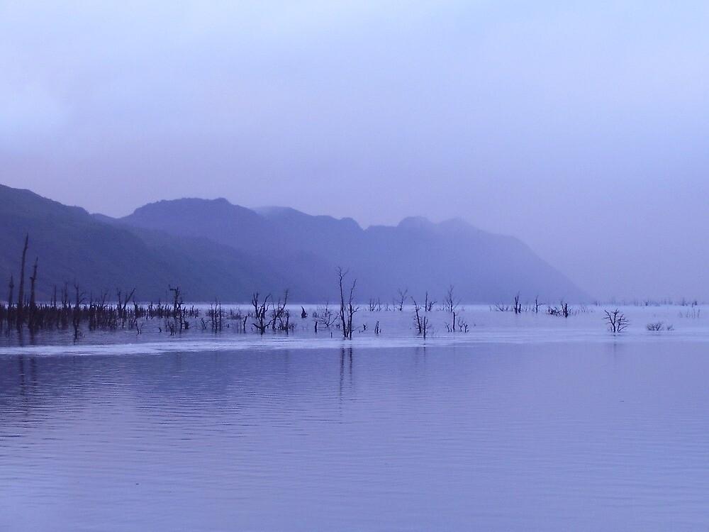 rainy dusk at Lake Macintosh, Tullah by Gaylene Norton