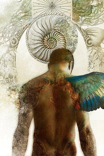 Sanctimonia by Aimee Stewart