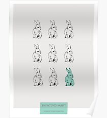 Erschrockener Kaninchen-Druck Poster