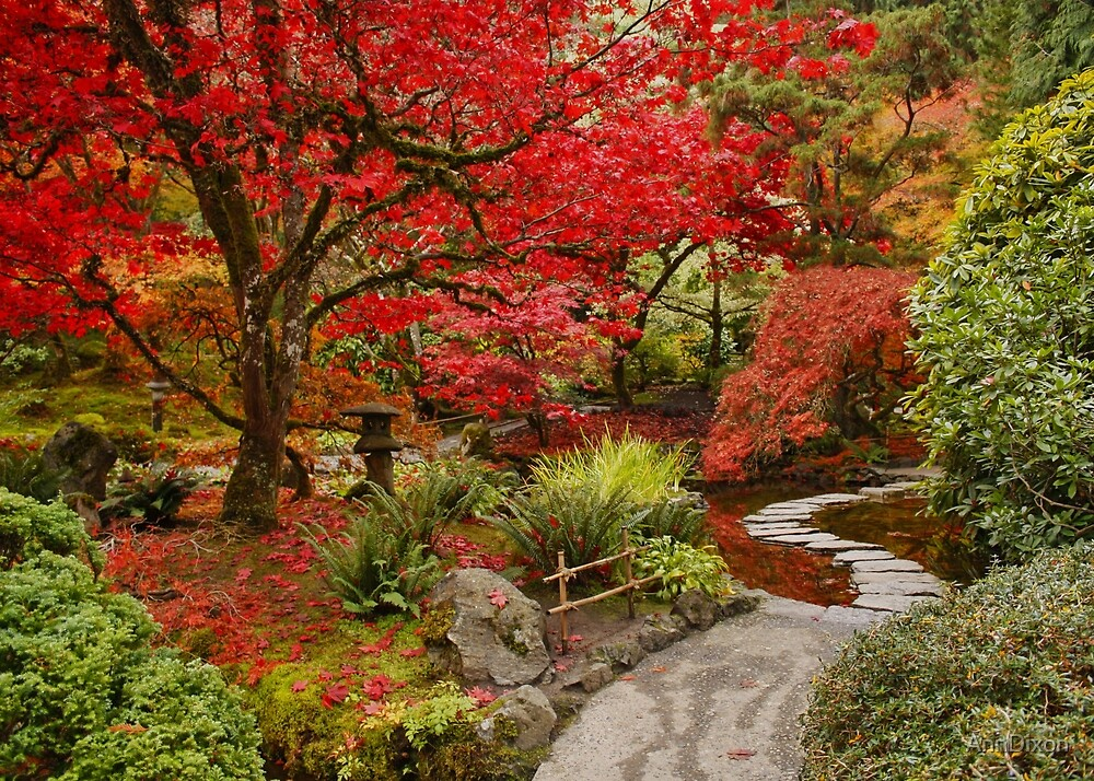 Quot Japanese Garden In Butchart Gardens Bc Canada Quot By