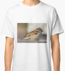 Male Sparrow Classic T-Shirt