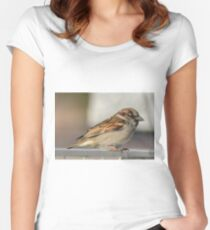 Male Sparrow Women's Fitted Scoop T-Shirt