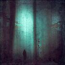 Schattenwelt - World of Shadows by Dirk Wuestenhagen