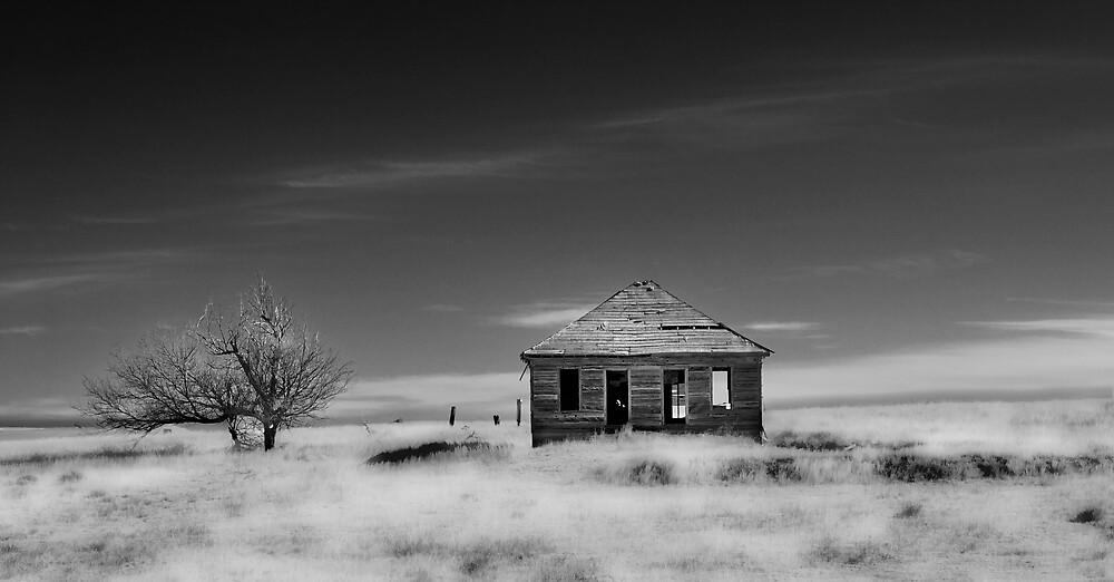 HOME ON THE RANGE by dvande1