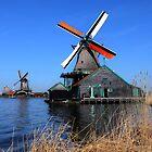 Windmills of Zaanse Schans by annalisa bianchetti