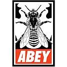 « Abey » par le-grom