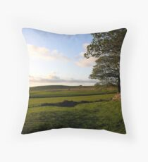 Sheepfold in Swaledale Throw Pillow