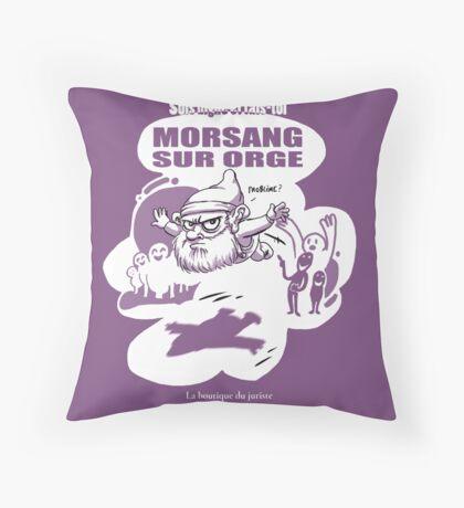 Morsang sur Orge Coussin de sol