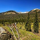 Rocky Mountain National Park by Judy Vincent