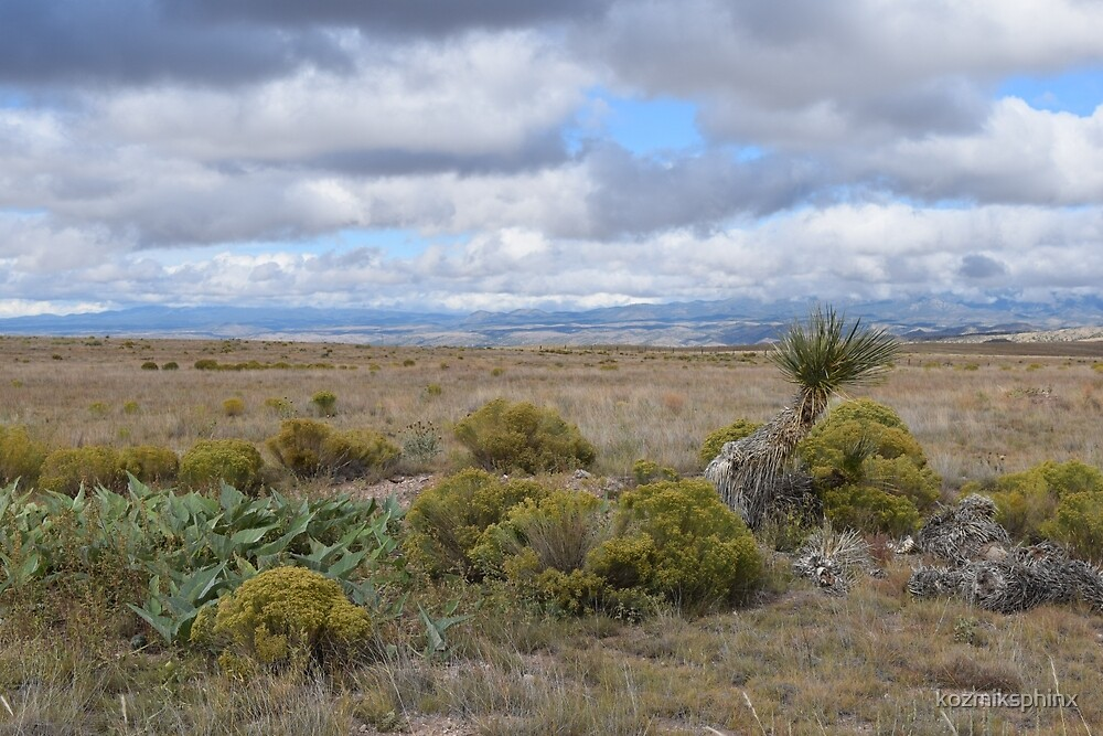 New Mexico Landscape on the way to the Gila National Forest  by kozmiksphinx