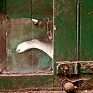 A foot in the door by Catherine Hadler