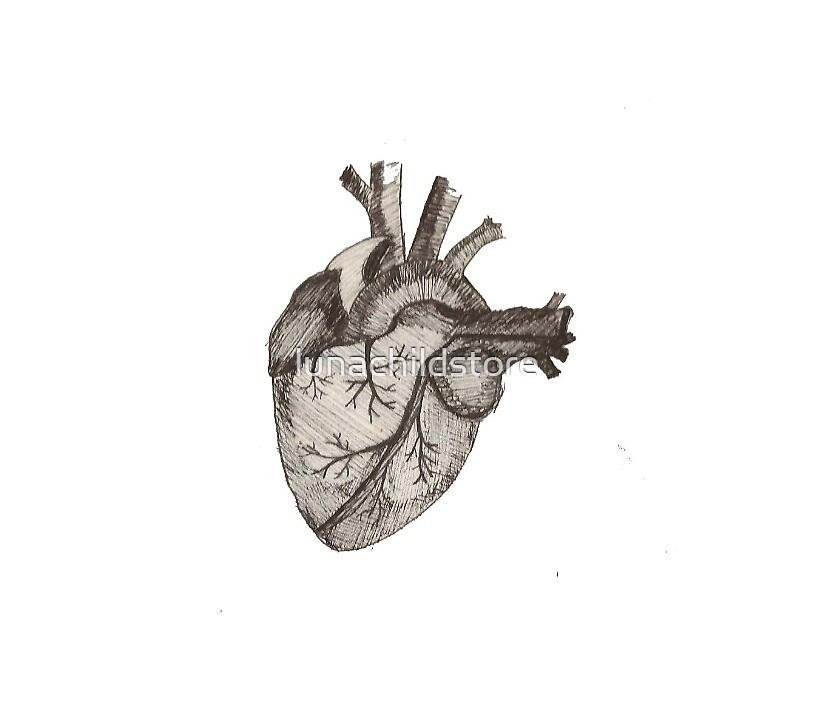 Anatomical Heart by lunachildstore