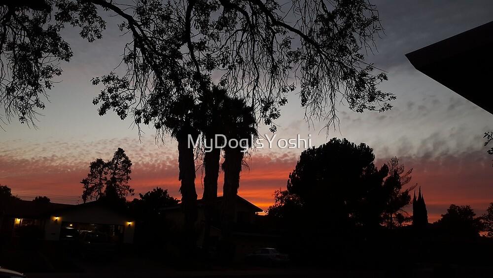 Suburban Sunset by MyDogIsYoshi