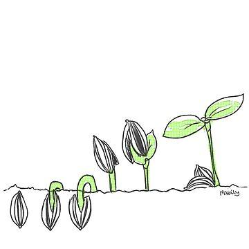 germinate by TotoroTeser