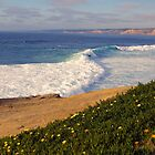 Waves of wonder by Ken Fleming