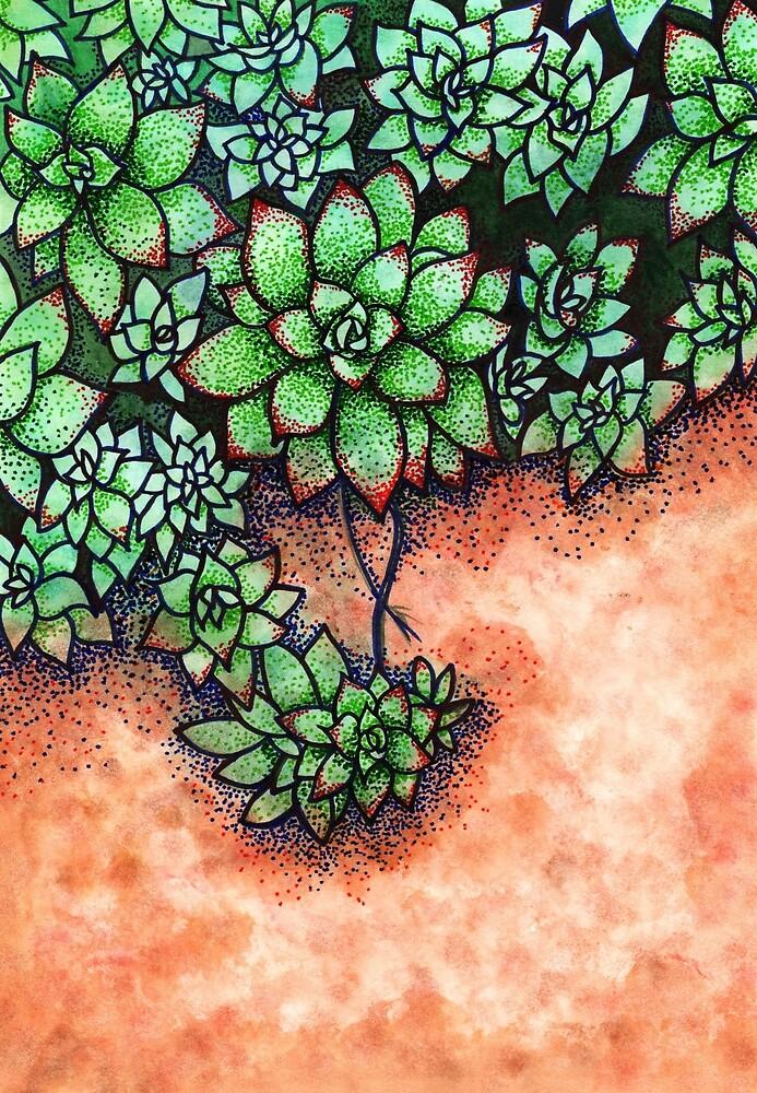 Succulents by aidesignstudio