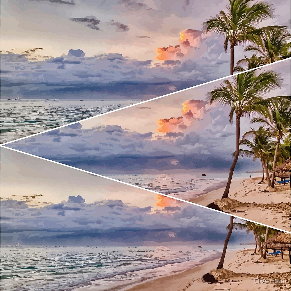 Palm Trees At Sunset Triptych by Clive Littin