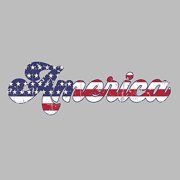 Rústico Vintage America de birchandbark