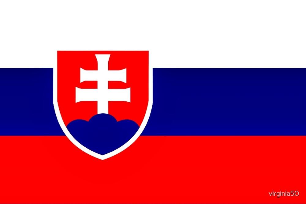 Flag of Slovakia by virginia50