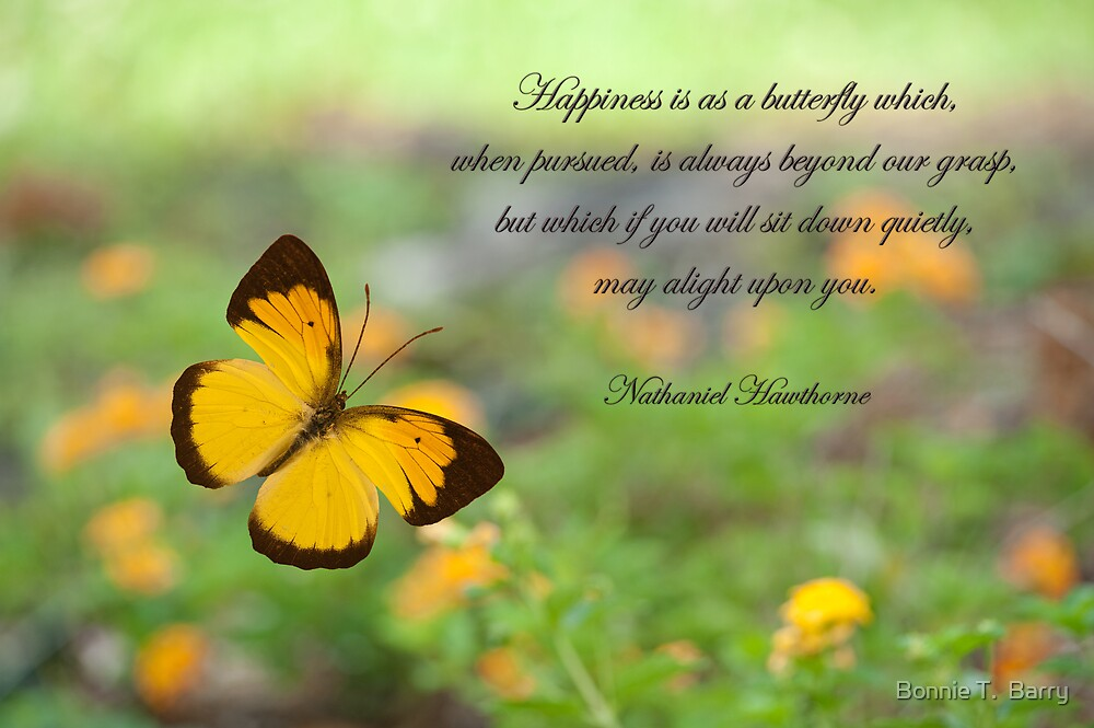 Quot Happiness Is Like A Butterfly Quot By Bonnie T Barry