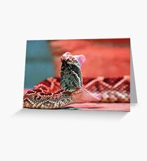 Rattle Snake  Greeting Card