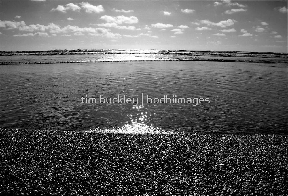 west edge. westcoast, aotearoa by tim buckley | bodhiimages