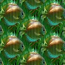 Shoal (pattern) by Yampimon