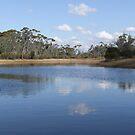 yornanning dam western australia by Rick Playle